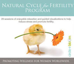 Fertility Mind-Boby Program