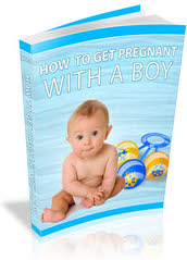 How To Get Pregnant With A Boy E-Book